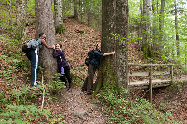 Participants take to the Alpine hiking trails during their free time.