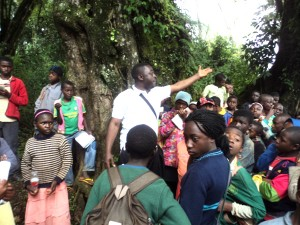 Environmental education with children in the Oku Community forest.