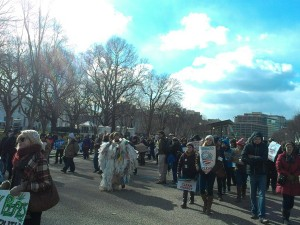 Keystone protesters outside the White House. Led by 350.org, the campaign uses mobilisation through social media combined with embodies displays of action.