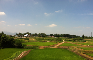 Near my grandparents' home in Fukushima, big-box stores have been replacing one rice field after another. Watching the soil disappear motivates me to listen to the dwindling population of farmers as they negotiate global market pressures and the legalization of GM crop in Japan.