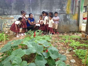 Educating kids on organic farming under the JCI PL UN MDG 7 Project.