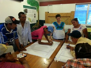 Green/gray analysis for adaptation to climate change focal group discussion in Salto de Agua, Chiapas, Mexico (March 2015).
