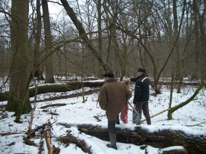 A recently abandoned pedunculate oak dominated hardwood floodplain forest on Bereg plain (W Ukraine). The Masonca forest was used for pig masting by locals over hundreds of years. Local knowledge holders are explaining that it is a sin against God to let such a perfect ash trunk be left to decay.