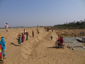 Women engaged in rebuilding their lives and livelihoods soon after the cyclone on east coast of India.